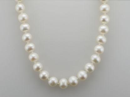 Image de Collier de perles d'eau douce 18''
